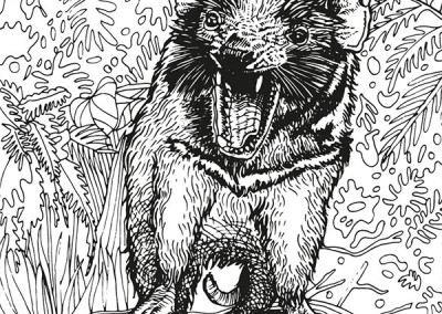 aust-08-tassiedevil